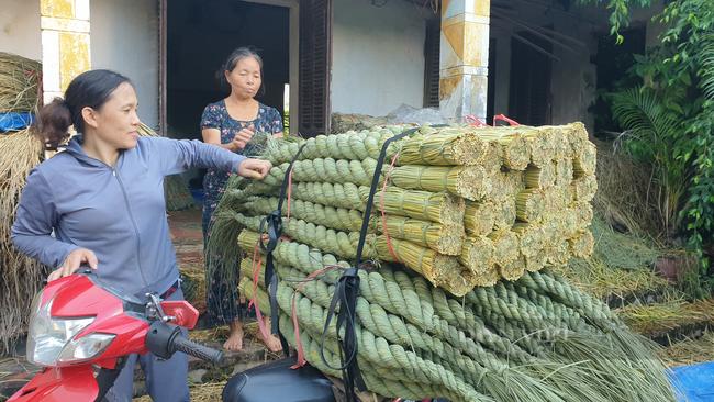 Ninh Bình: Đưa rơm khô xuất ngoại, nông dân ở đây có thêm thu nhập khá - Ảnh 7.