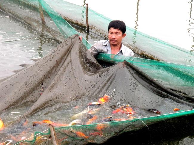 Đồng bộ hệ thống thủy lợi tại các xã nông thôn mới - Ảnh 1.