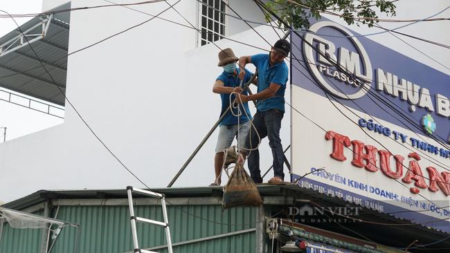 Đà Nẵng: Cho phép người dân sửa chữa, gia cố nhà cửa để phòng, chống bão - Ảnh 1.