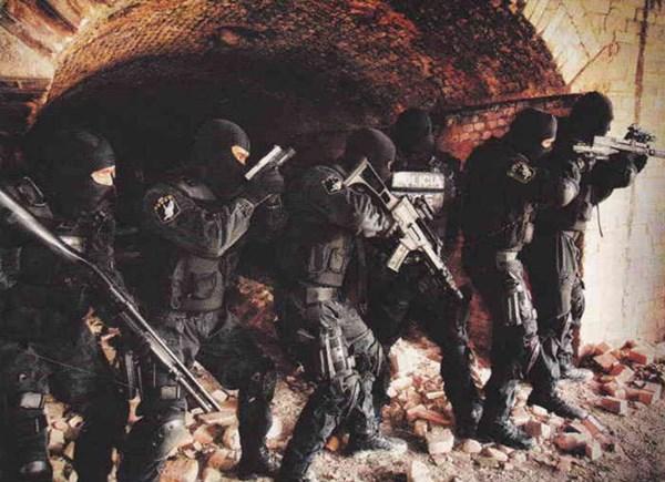 Hoạt động chủ yếu của GOE là chống tội phạm có tổ chức, các băng nhóm buôn bán ma túy, tội phạm cực kỳ nguy hiểm, khủng bố.