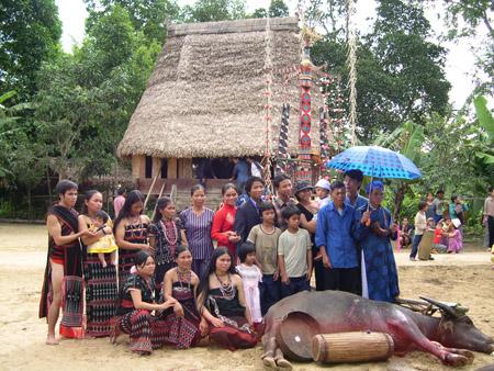 Một đám cưới của người Cơtu tại thôn Trao, thị trấn P'rao, huyện Đông Giang(Quảng Nam) vào năm 2007 mà sau đó là sự huệ lỵ của nó.