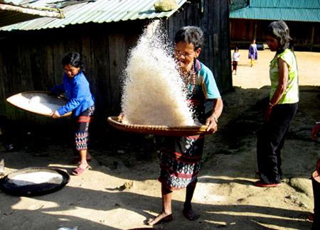 Ngoài công việc trên nương rẫy, phụ nữ Cơtu còn tranh thủ giã lúa để có gạo nấu cơm phục vụ gia đình, lo giặt dũ áo quần, tắm cho con cái.