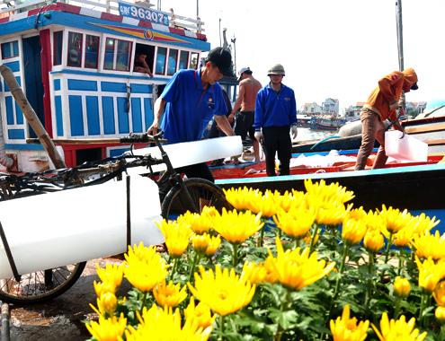 Ngư dân Quảng Ngãi tập kết đá lạnh đưa xuống khoang tàu chuẩn bị ra khơi vừa đánh bắt thủy sản vừa đón Tết trên biển.
