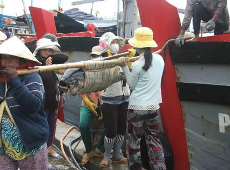 Phụ nữ vận chuyển cá ngừ đại dương đầu năm trên Cảng Tuy Hòa
