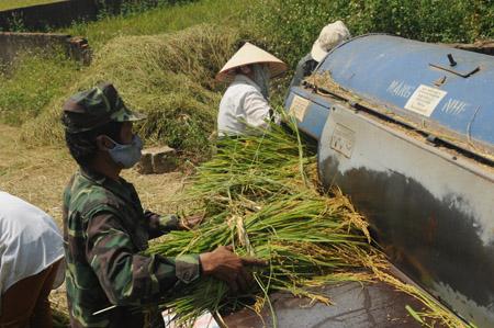 """Chuyên gia PhạmTất Thắng: """"Sản xuất nông nghiệp của chúng ta hiện nay còn quá manh mún, nhỏ lẻ thì làm sao có thể ứng dụng tốt các tiến bộ khoa học và các mô hình mới""""."""