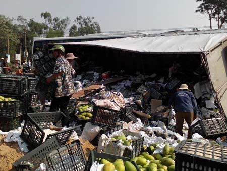 Sau khi xe tải lật do tai nạn, người dân xung quanh phụ giúp tài xế thu gom trái cây .