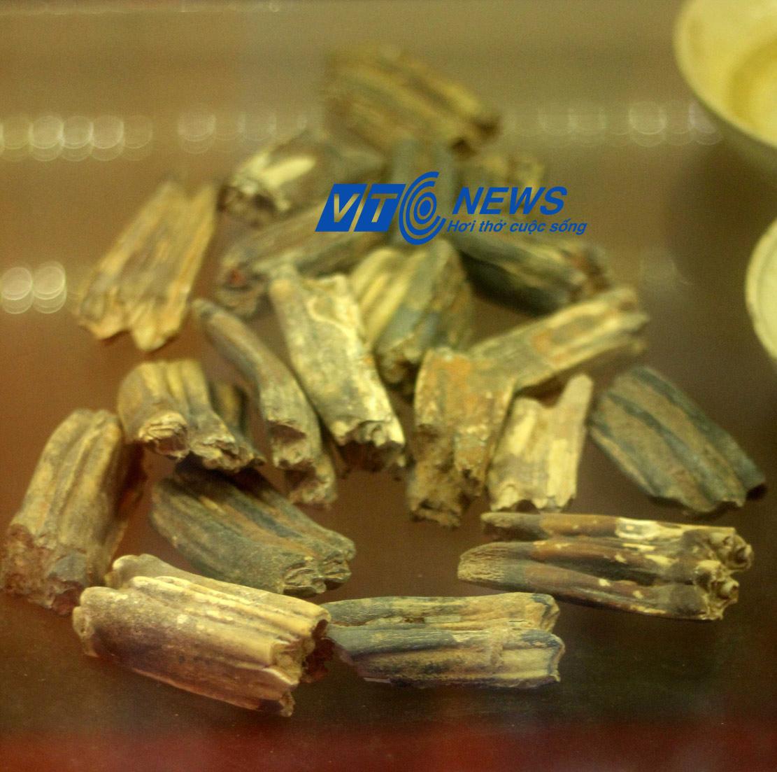 Xương và răng động vật tìm thấy ở trận đồ