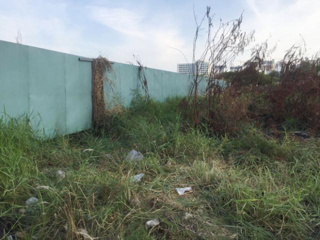 Phát hiện xác người chết khô nằm ẩn dưới cỏ ở Sài Gòn