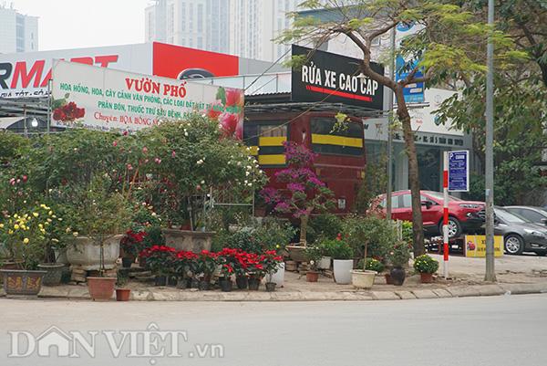 Cũng thuộc quận Cầu Giấy, một cửa hàng hoa cảnh trưng hết cây ra vỉa hè để người mua dễ dàng ngắm và mua. Nhưng điều này cũng đồng nghĩa với việc người đi bộ sẽ phải di chuyển xuống lòng đường.