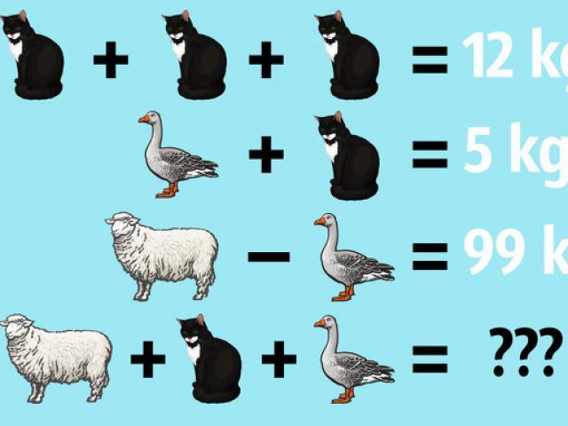 9 câu đố khiến bạn vắt kiệt chất xám tìm câu trả lời