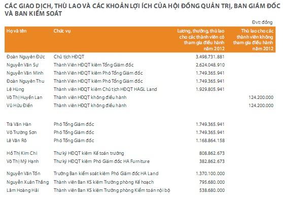 Nguồn: HAG - Báo cáo thường niên 2012