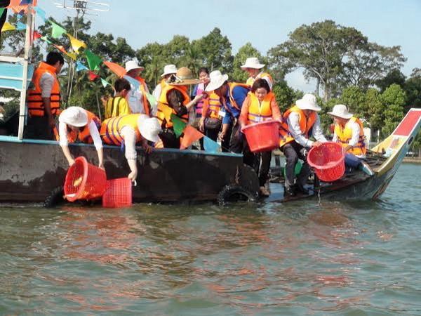 Thả hơn 290.000 con cá bản địa quý hiếm trên sông Hậu. (Ảnh: Công Mạo/Vietnam+)