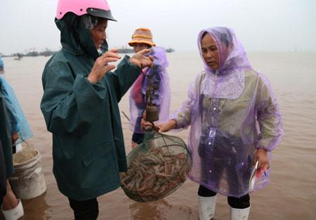 Những thương buôn chủ yếu là phụ nữ, họ xem xét, cân đo, mặc cả từng mẻ cá.