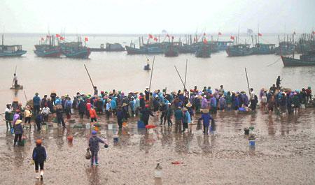 Chợ cá bắt đầu vào lúc 5 giờ sáng, sau hơn một tiếng là chợ bắt đầu vãn dần. Thương lái ở các chợ nườm nượp đổ về bến, lội nước ra tận ghe để mua hải sản tươi sống.