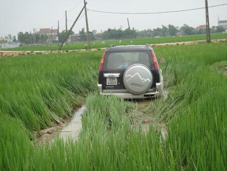 Chiếc xe ô tô rơi xuống ruộng sau khi gây tai nạn thương tâm