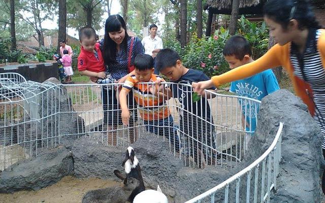 Khách đến tham quan nơi nuôi nhốt động vật hoang dã thông thường của nông dân Liên Chiểu.