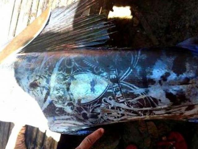 Philippines: Bắt được loài cá xăm kín thân hết sức kỳ lạ