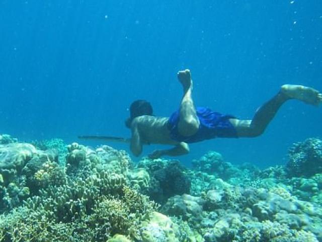 """Tộc người Indonesia tiến hoá """"như cá"""", lặn 13 phút không cần thở"""