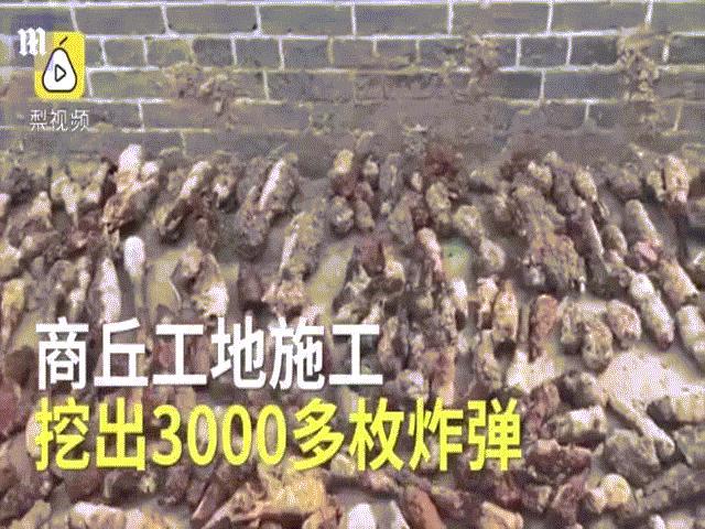 TQ: Đào đất xây bể bơi, phát hiện hàng ngàn thứ chết người