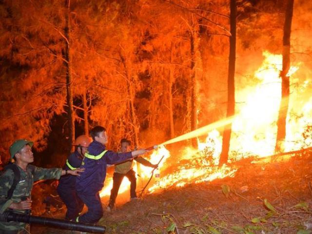 Biển lửa cháy rừng chưa ngớt, Hà Tĩnh sẵn sàng di dân trong đêm nay