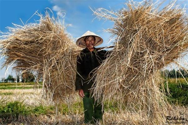 Đồng đất Việt Nam qua ống kính nhiếp ảnh gia người Pháp 11