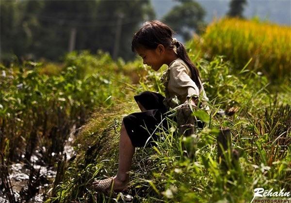 Đồng đất Việt Nam qua ống kính nhiếp ảnh gia người Pháp 7