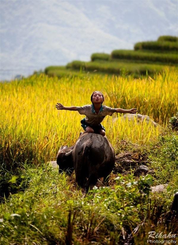 Đồng đất Việt Nam qua ống kính nhiếp ảnh gia người Pháp 17