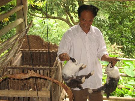 Nhiều hội viên Hội CCB thị trấn Quan Hóa (Quan Hóa, Thanh Hóa)  vay vốn ưu đãi đầu tư nuôi thỏ sinh sản.