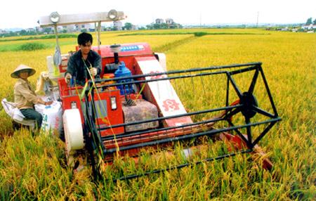 100% số xã ở Ninh Bình đã hoàn thành dồn điền đổi thửa đợt 1.