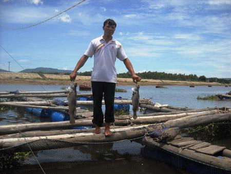 Người dân nuôi cá lồng bè ở Hải Thanh xót xa vì cá chết hàng loạt.