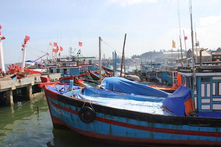 Không ít tàu cá trong số này phải neo bờ, bỏ dở chuyến đi vì thiếu ngư dân.