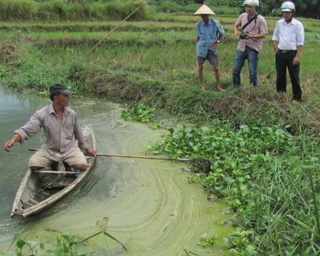 Nước thải độc hại của Nhà máy Tinh bột sắn đã hủy diệt thủy sản tại hồ thủy lợi Bàu Sen.