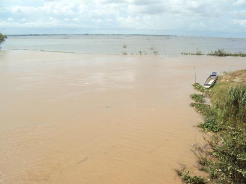 Nước trên nội đồng tứ giác Long Xuyên đang lên từ 3 đến 5cm mỗi ngày.