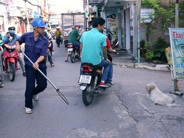 """Sau """"dẹp loạn"""" vỉa hè, ông Đoàn Ngọc Hải muốn bắt chó chạy rông ở trung tâm"""