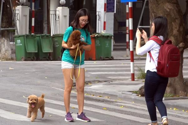 Dù đã có luật cấm, nhưng nhiều người dân vẫn vô tư đem chó ra đường mà không rọ mõm.