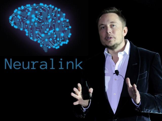 Tỷ phú Elon Musk và tham vọng cấy chíp vào não bộ con người