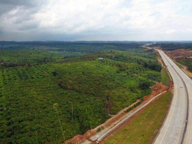 Indonesia: Kế hoạch 33 tỷ USD dời đô đến khu rừng ở hòn đảo lớn nhất châu Á