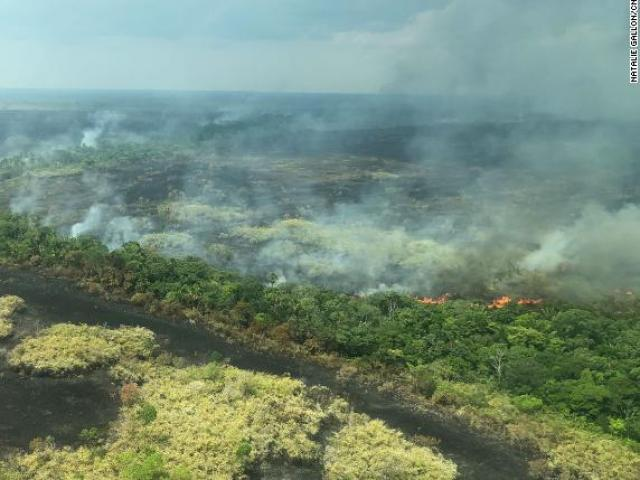 Cháy rừng kinh hoàng ở Amazon: Cả một vùng chỉ còn là sự chết chóc