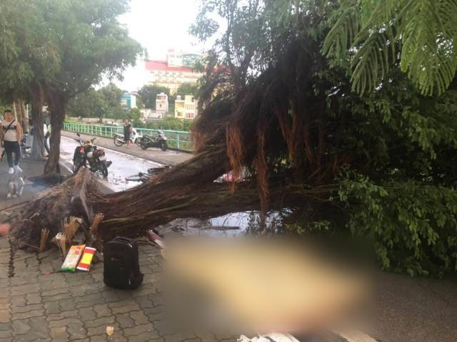 Đứng trú mưa dưới gốc cây cổ thụ khi cuồng phong quét qua, nam thanh niên tử vong