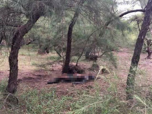 3 cô gái chết bí ẩn và tội ác của tên sát thủ đào hoa: Truy tìm hung thủ