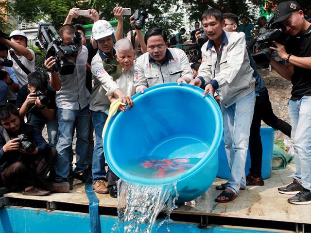 """Clip: Thả hàng trăm con cá chép xuống sông Tô Lịch khi """"bảo bối"""" của Nhật hết hạn thử nghiệm"""