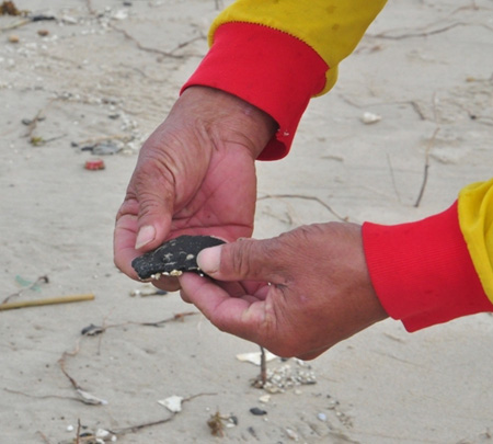 Những cục dầu lớn nhỏ đã làm ảnh hưởng môi trường nước tại các bãi biển du lịch.