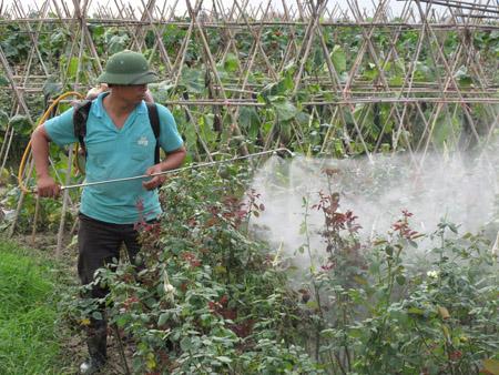 Nhiều nông dân vẫn chưa ý thức được cách sử dụng thuốc BVTV an toàn.