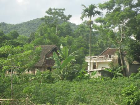 Một góc thôn Mu.