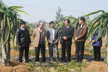 Chủ tịch Nguyễn Quốc Cường (trái) thăm trang trại của ông Ngô Thọ Thanh.