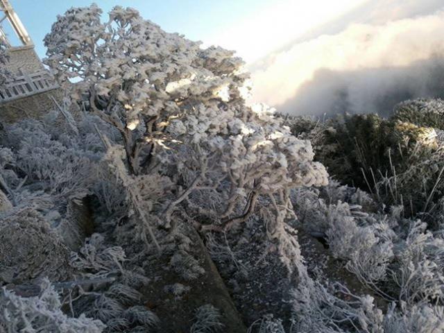 Ngày mai (20/12), băng tuyết có tiếp tục phủ trắng đỉnh Fansipan?