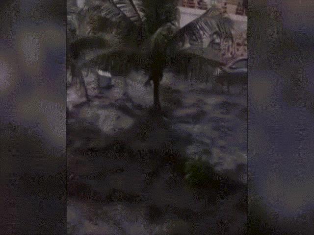 Video mới về sóng thần cao 6 mét ập vào thành phố Indonesia