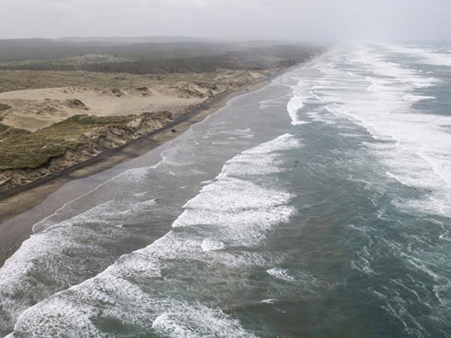 New Zealand: Tưởng búp bê trôi nổi trên biển, không ngờ là em bé