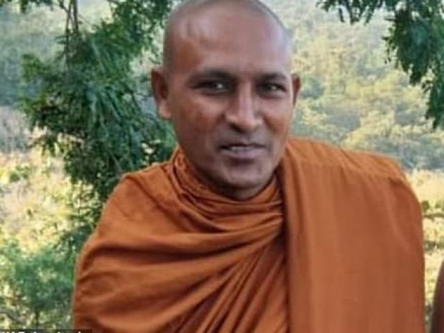 Ấn Độ: Ngồi thiền dưới gốc cây, gặp báo hoa mai và cái chết thảm khốc