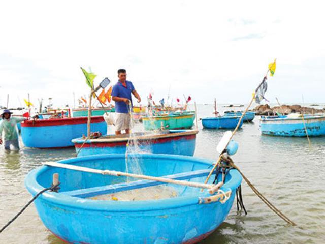 Cá lưới hai ngon cỡ nào mà dân chen chân mua cho bằng được?